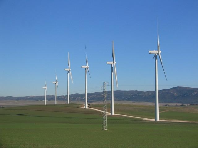 farmy wiatrowe na polu